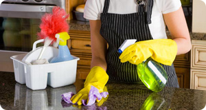 Cleaner cleaning counter surface